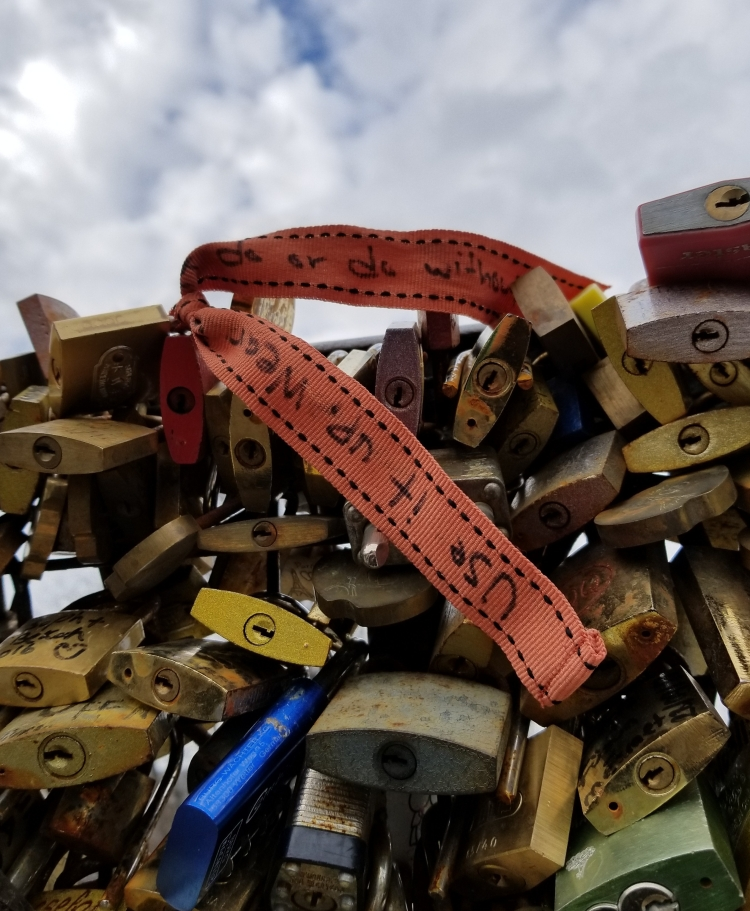 Lizzie Does Paris - Love Bridge locks